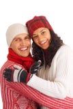 Dos amigos del invierno Imagen de archivo
