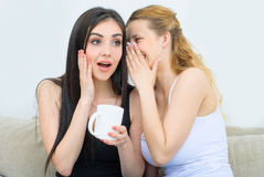 Dos amigos felices que hablan y que beben el café o té y cotilleo Fotografía de archivo libre de regalías
