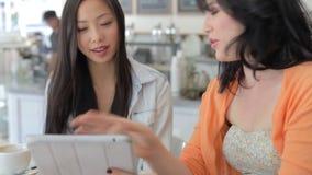 Dos amigos femeninos en la cafetería que mira la tableta de Digitaces almacen de video