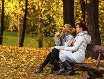 Dos amigos femeninos hermosos que descansan sobre banco en parque Imagen de archivo libre de regalías