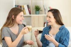 Dos amigos que hablan y que beben el café en casa Imágenes de archivo libres de regalías