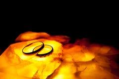 Dos anillos fotografía de archivo libre de regalías