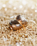 Dos anillos Imagenes de archivo
