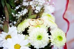 Dos anillos Imagen de archivo