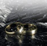 Dos anillos de bodas de oro en superficie del hielo Imagen de archivo