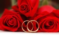 Dos anillos de bodas del oro Foto de archivo libre de regalías