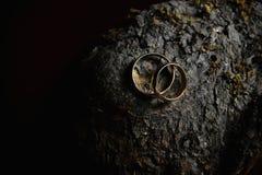 Dos anillos de bodas en fondo de madera Aún fotografía oscura de la vida Fotos de archivo libres de regalías