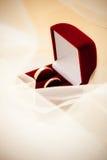 Dos anillos de bodas en un rectángulo fotografía de archivo libre de regalías