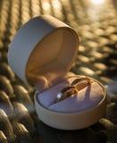 Dos anillos de bodas en una caja de regalo Fotos de archivo libres de regalías