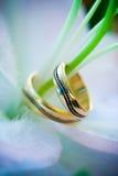 Dos anillos de bodas en una flor Imágenes de archivo libres de regalías