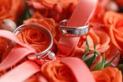 Dos anillos de bodas de oro que ponen en la bandeja de rosas anaranjadas accesorios para la novia y el novio Preparación para Imagenes de archivo