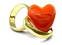 Dos anillos de oro Fotografía de archivo libre de regalías
