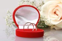 Dos anillos de oro en rectángulo rojo Imágenes de archivo libres de regalías