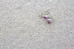 Dos anillos en la arena Imagen de archivo