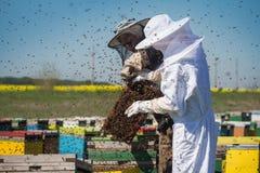 Dos apicultores con las abejas que pululan alrededor Fotografía de archivo libre de regalías