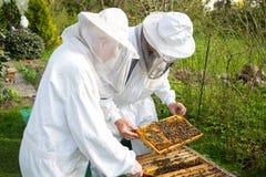 Dos apicultores que mantienen la colmena de la abeja Imagen de archivo libre de regalías