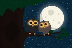Dos búhos lindos se sientan en la rama debajo de la luna stock de ilustración