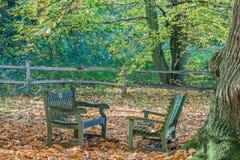 Dos bancos en un parque - lugar perfecto para una conversación imágenes de archivo libres de regalías