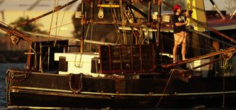 Dos barcos rastreadores pesqueros almacen de metraje de vídeo