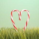 Dos bastones de caramelo en hierba. Imagenes de archivo