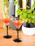 Dos bebidas rojas imagen de archivo libre de regalías
