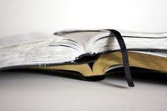 Dos biblias en el blanco - ángulo inferior Fotografía de archivo