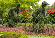 Dos bicicletas florales Imagenes de archivo