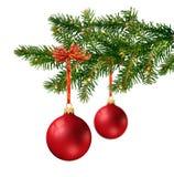 Dos bolas de cristal rojas en la ramificación del árbol de navidad Foto de archivo libre de regalías