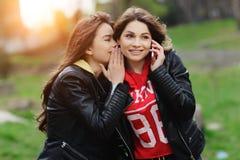 Dos bonitos y mujer joven feliz que usa el teléfono móvil en el parque Concepto de los mejores amigos Fotos de archivo