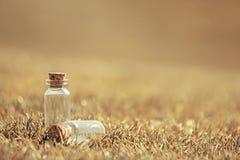 Dos botellas de cristal Imagen de archivo