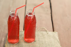 Dos botellas de frío guisaron la fruta de bayas clasificadas Imagen de archivo libre de regalías
