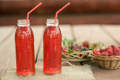 Dos botellas de frío guisaron la fruta de bayas clasificadas Imagen de archivo