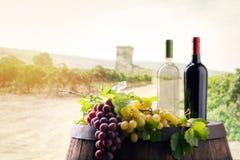 Dos botellas de vino adentro en wineyard fotografía de archivo libre de regalías