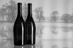 Dos botellas y paisajes del otoño en la niebla Foto de archivo
