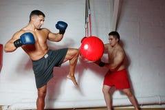 Dos boxeadores en el entrenamiento Imagen de archivo libre de regalías