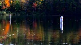 Dos boyas de la nadada en Norton Pond, Maine almacen de metraje de vídeo
