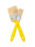 Dos brochas de los amarillos Imagen de archivo libre de regalías