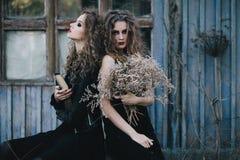 Dos brujas del vintage recolectaron la víspera de Halloween Fotos de archivo libres de regalías
