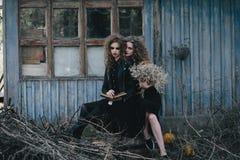 Dos brujas del vintage recolectaron la víspera de Halloween Imágenes de archivo libres de regalías