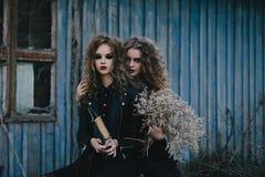 Dos brujas del vintage recolectaron la víspera de Halloween Foto de archivo libre de regalías