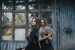 Dos brujas del vintage recolectaron la víspera de Halloween Fotografía de archivo libre de regalías