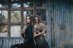 Dos brujas del vintage recolectaron la víspera de Halloween Foto de archivo