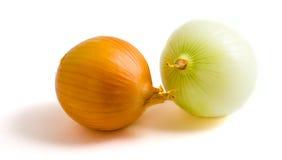 Dos bulbos amarillos de la cebolla fotografía de archivo