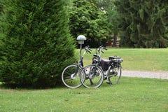 Dos bycicles parquearon cerca de arbustos en parque Fotografía de archivo