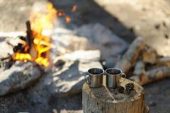 Dos círculos del metal en el bosque cerca del fuego Imagen de archivo libre de regalías