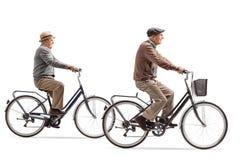 Dos caballeros mayores que montan las bicicletas Imágenes de archivo libres de regalías