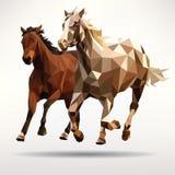 Dos caballos aislados en el fondo blanco Foto de archivo libre de regalías