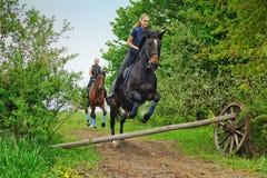 Dos caballos de montar a caballo de las muchachas en campo Foto de archivo