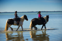 Dos caballos de montar a caballo de las personas Fotos de archivo libres de regalías