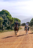 Dos caballos de montar a caballo de los hombres Fotografía de archivo
